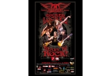 un bilet la concertul Aerosmith