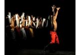 32 x invitatie dubla la un show cu dansatori de la Rio de Janeiro