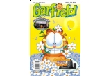 12 x abonament de 6 luni la Revista Garfield
