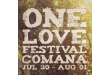 4 x invitatie simpla la festivalul One Love