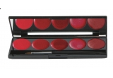 4 x paleta Ruj de Buze 5 culori Parisax Professional