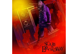 <b>3 CD-uri SCARS ON BROADWAY!</b><br />