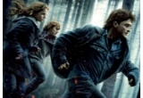 2 tricouri cu Harry Potter and the Deathly Hallows