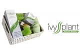 4 x set de produse cosmetice IVYSS