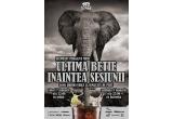 3 x invitatie pentru 5 persoane + o sticla de vin (in Elephant Pub)