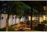 o cina in doi la restaurantul chinezesc Orasul Interzis (Bucuresti)