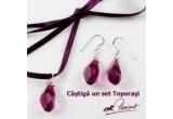"3 x set accesorii ""Toporasi"""