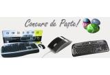 1 x kit cu mouse + tastatura Serioux SRXMKM-5000, 1 x tastatura Delux DLK-5108T, 1 x mouse optic Pleomax SPM-8000