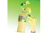 3 x pachet de 8 baxuri a cate 12 sticle Prigat Limonada cu Menta 0.5L
