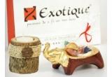 5 x produs Exotique