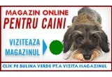 1 x Tuns Gratuit + Hrana Royal Canin pentru 2 luni in limita a 24 kg, 1 x aranjat profesional + hrana Royal Canin pentru o luna in limita a 12 kg, 1 x Hrana Royal Canin pentru o luna in limita a 12 kg + o sepcuta de soare