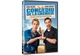 """1 x DVD cu filmul """"Concediu de la casnicie"""""""