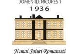 1 x sticla de vin de la Domeniile Nicoresti