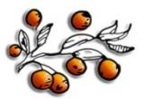 3 x premiu continand Fulgi Bio Crocanti (ciocolata, nuca cocos, visine) + Batoane cu fructe si ciocolata + Gem Bio delicatesa din prune si corcoduse, 5 x premiu continand Fulgi bio + Batoane cu fructe, 7 x Fulgi Bio