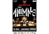 2 x invitație dubla la concertul trupei The Animals