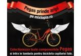 1 x bicicleta copilariei tale Pegas