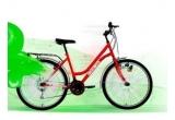 12 x bicicleta rosie