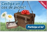 1 x un cos de picnic pentru 4 persoane