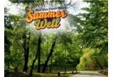 2 x abonament duble la Summer Well 2012