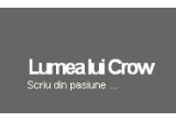 un banner pe crow.ro pentru 90 de zile, dreptul de a publica 3 articole pe crow.ro sau un tricou personalizat