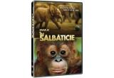 """1 x DVD cu filmul """"In salbaticie"""""""