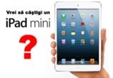1 x iPad-ul Mini