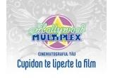 """Difuzarea filmuletului la Hollywood Multiplex<br type=""""_moz"""" />"""