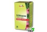 1 x o cutie de Echinaceea 30 tablete, 1 x cutie multivitamine minerale 30 tablete, 1 x O cutie Vitamina C cu fructe Brontisori+ cadou o jucarioara 30 tablete