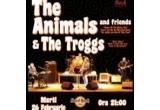 2 x invitatie la concertul The Animals & The Troggs