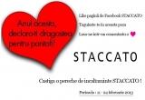 1 x o pereche de incaltaminte STACCATO