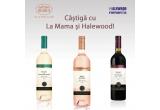 1 x 3 sticle de vin de la viile Halewood sau 1 x  un Rosso di Valachia si un Blanc de Transylvanie sau 1 x un Rosso di Valachia
