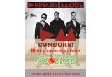 1 x bilet Depeche Mode + cazare Hostel Peaches