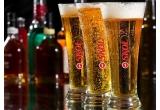 150 x bax (sixpack = 6 doze) de Skol Beer, 1 x 60 de sticle PET SKOL 2 L + 60 de doze de SKOL 0.5L