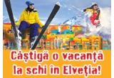 1 x excursie la schi in Elvetia, 42 x telefon HTC Desire X, 420 x set cu produse promotionale Sika (tricou + sapca)