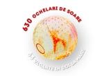 63 x excursie de 7 zile la mare in Costinesti, 630 x pereche ochelari de soare