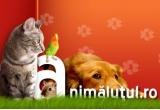 2kg de de hrana ProFormance® pentru pisici, 3 kg de hrana ProFormance® pentru caini<br />