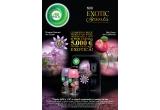 1 x 5000 euro pentru o excursie exotica