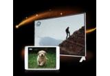 1 x televizor LG LED Ultra HD 4K 101 cm, 4 x iPad Mini