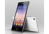 1 x smartphone Huawei Ascend P7