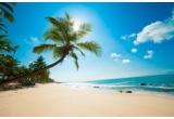 1 x vacanța all inclusiv in Bahamas + experiența Open Ocean Swim with the Dolphins și experiența Sunset Cruise on Catamaran with Dinner, 350.000 x pachet de țigarete Pall Mall Extra Cut Click On