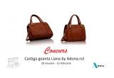 1 x geanta Liana by Adona.ro