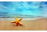 50 x voucher excursie pe litoral in Romania