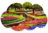 1 x excursie la Keukenhof in Olanda, 200 x crema hidratanta de zi cu extract de traditie si flori de narcisa, 200 x crema de zi cu extract de implinire si flori de crin, 200 x crema antiaging de zi cu extract de pasiune si floarea pasiunii