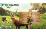 10 x bax de bere Ciucas + cos/set de picnic pentru 4 persoane