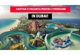 1 x vacanta in Dubai penyru 2 persoane