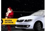 3 x masina Skoda Octavia, 30 x iPhone SE, 300 x fular personalizat