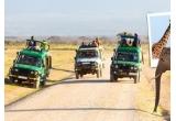 1 x excursie cu safari pentru 2 persoane de 12 zile in Kenya - Tanzania - Zanzibar in valoare de 7.000 euro