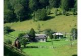 <p> 7 vacante in Romania<br /> </p>