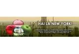 1 x excursie la New York pentru 3 zile