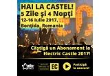 1 x General Access Pass la Electric Castle